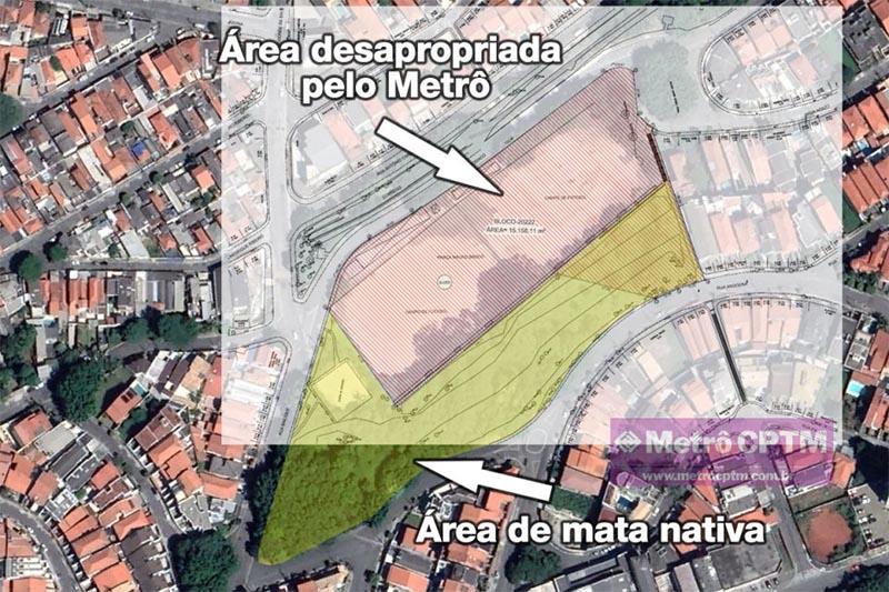 Metrô SP decide suspender derrubada de 355 árvores